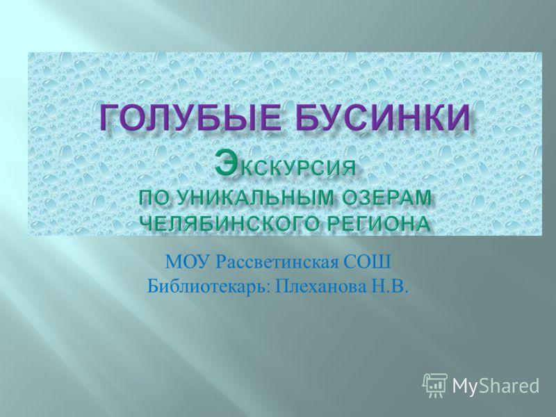 МОУ Рассветинская СОШ Библиотекарь : Плеханова Н. В.