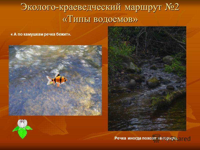Эколого-краеведческий маршрут 2 «Типы водоемов» « А по камушкам речка бежит». Речка иногда похожа на горную.