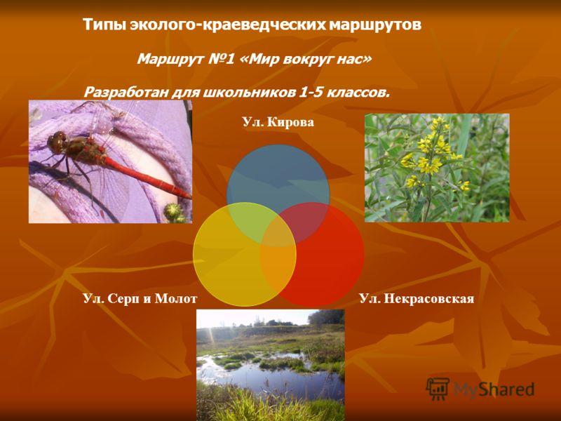 Типы эколого-краеведческих маршрутов Маршрут 1 «Мир вокруг нас» Разработан для школьников 1-5 классов.