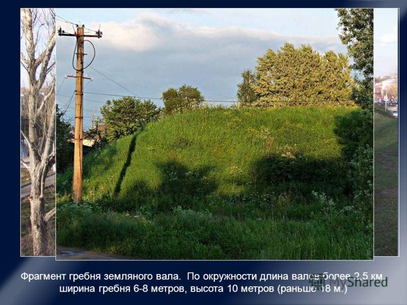 Фрагмент гребня земляного вала. По окружности длина валов более 2,5 км, ширина гребня 6-8 метров, высота 10 метров (раньше 18 м.)