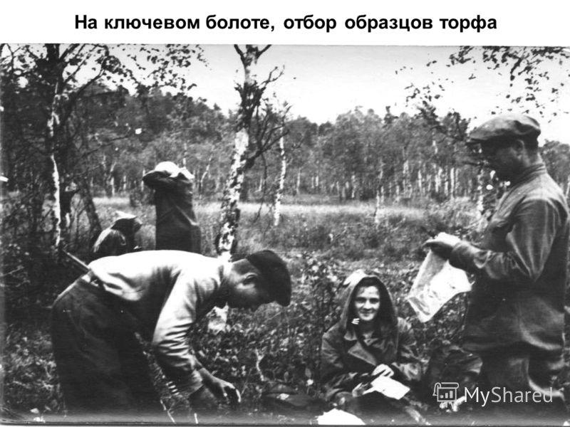 На ключевом болоте, отбор образцов торфа