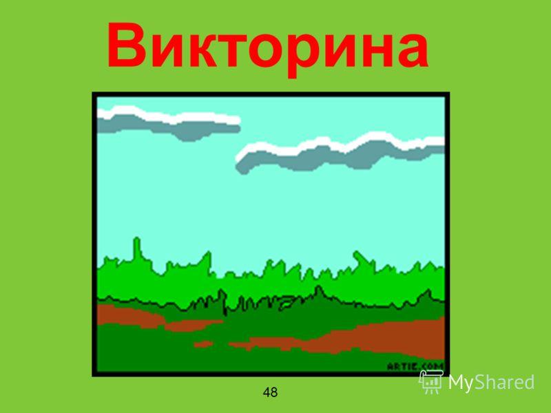 Викторина 48
