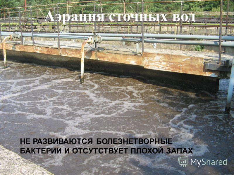 Аэрация сточных вод НЕ РАЗВИВАЮТСЯ БОЛЕЗНЕТВОРНЫЕ БАКТЕРИИ И ОТСУТСТВУЕТ ПЛОХОЙ ЗАПАХ