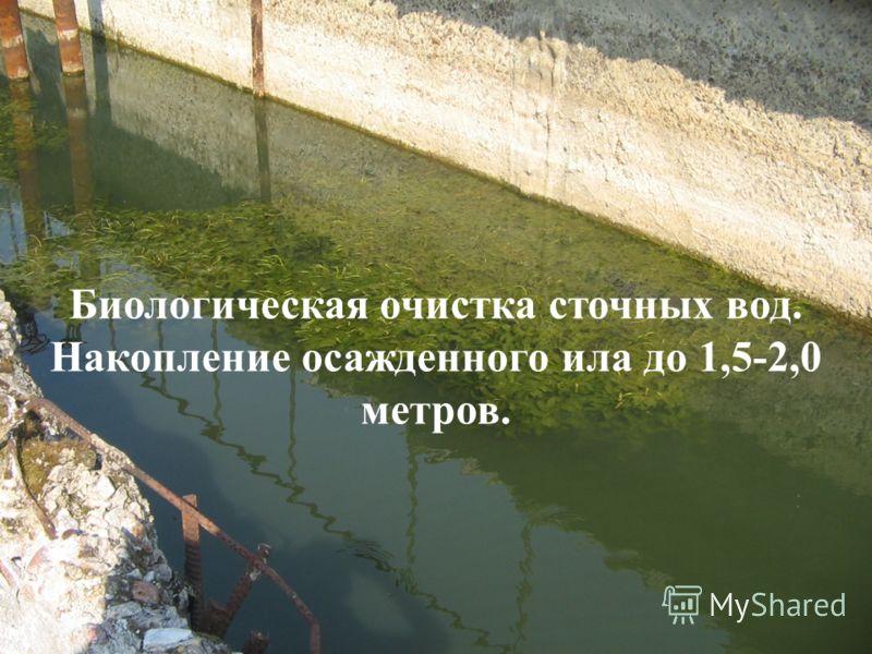 Биологическая очистка сточных вод. Накопление осажденного ила до 1,5-2,0 метров.