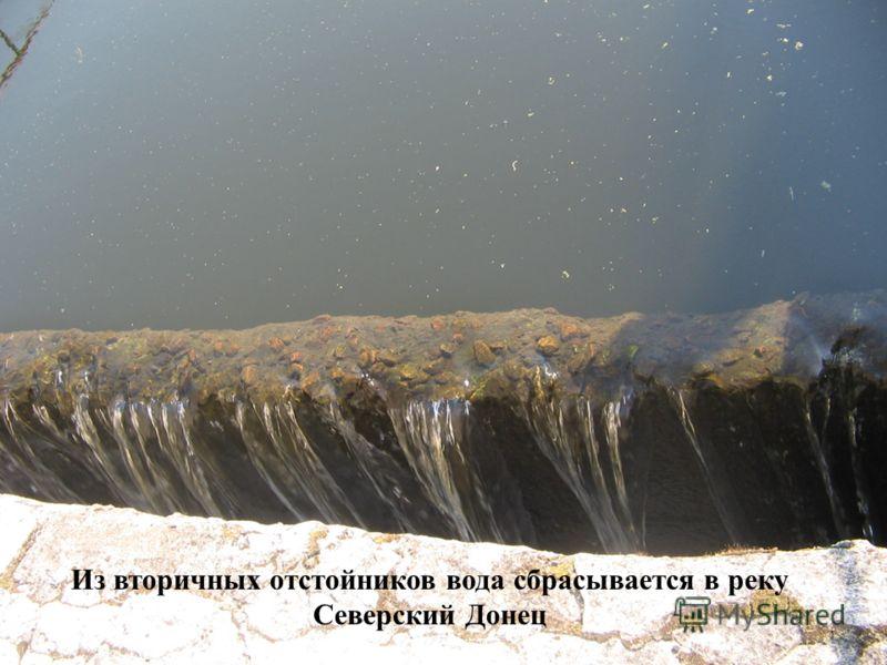 Из вторичных отстойников вода сбрасывается в реку Северский Донец