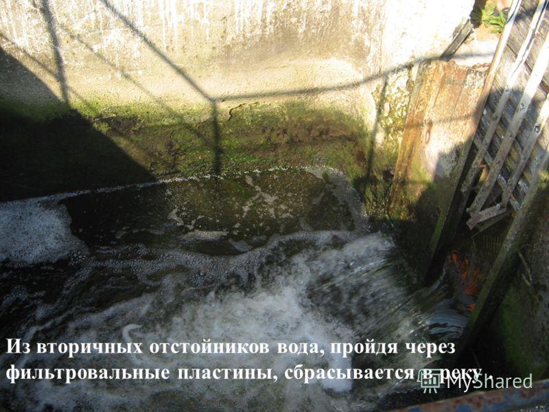 Из вторичных отстойников вода, пройдя через фильтровальные пластины, сбрасывается в реку.