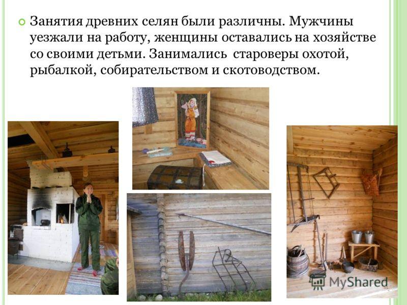 Занятия древних селян были различны. Мужчины уезжали на работу, женщины оставались на хозяйстве со своими детьми. Занимались староверы охотой, рыбалкой, собирательством и скотоводством.