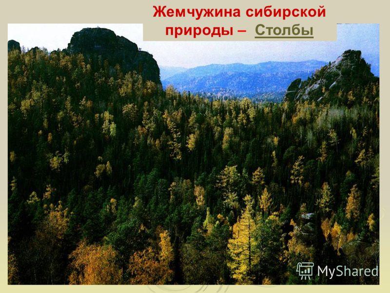 Жемчужина сибирской природы – СтолбыСтолбы