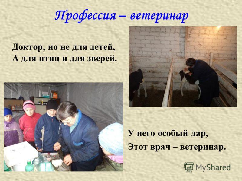 Профессия – ветеринар у него особый