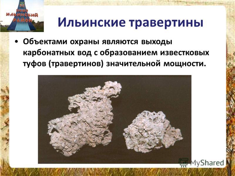 Ильинские травертины Объектами охраны являются выходы карбонатных вод с образованием известковых туфов (травертинов) значительной мощности.