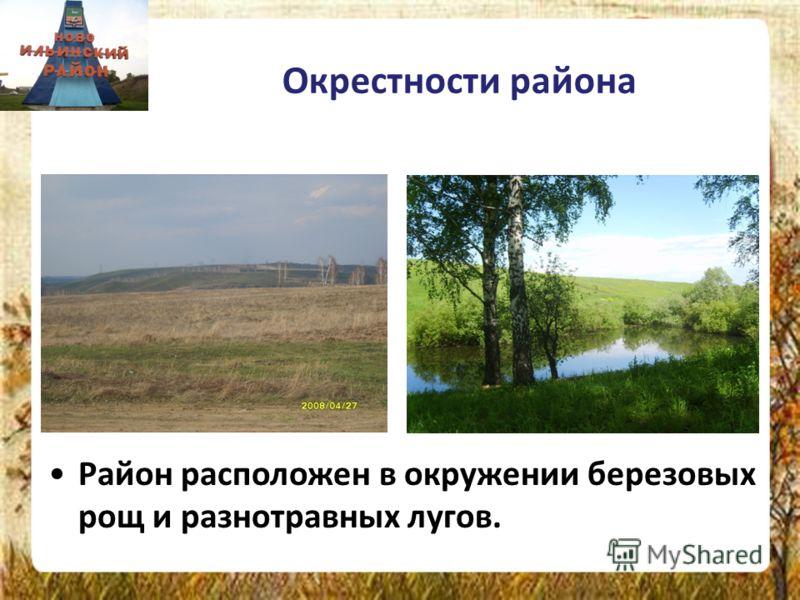 Окрестности района Район расположен в окружении березовых рощ и разнотравных лугов.