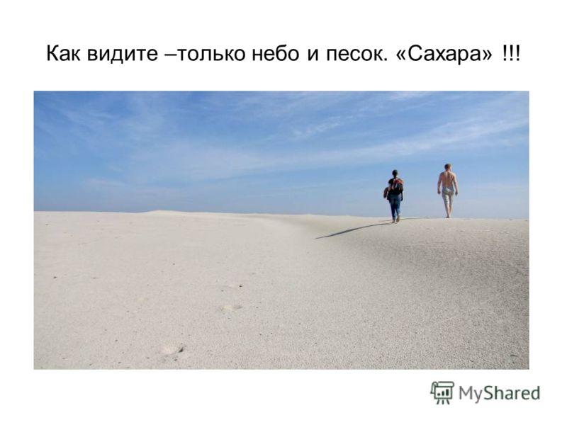 Как видите –только небо и песок. «Сахара» !!!