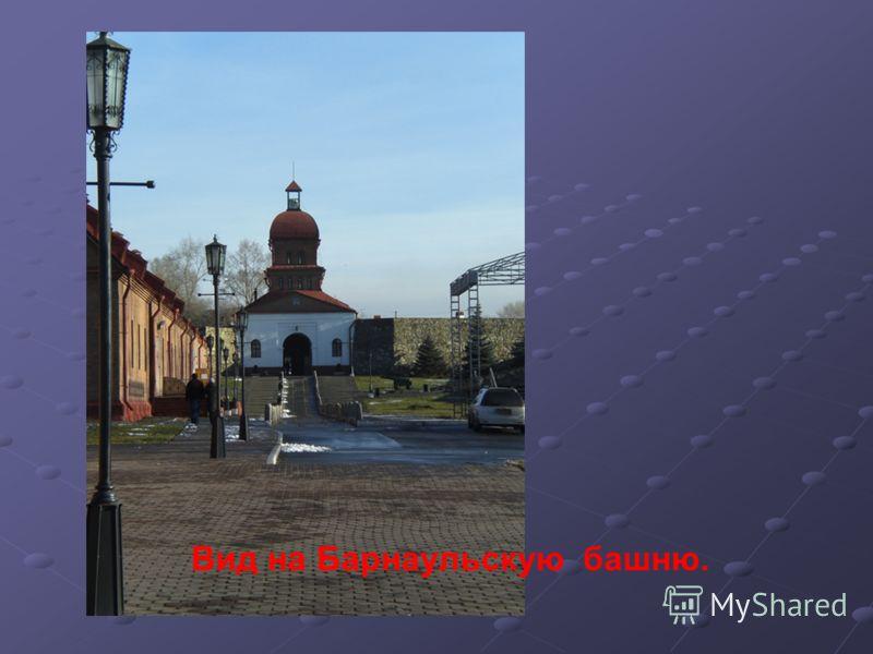 Вид на Барнаульскую башню.