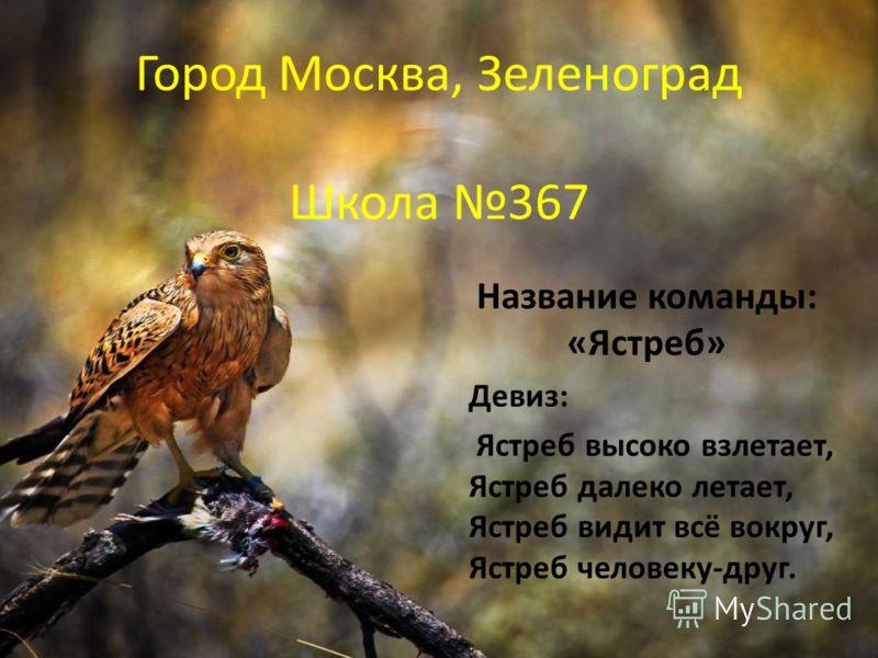 Город Москва, Зеленоград Школа 367 Название команды: «Ястреб» Девиз: Ястреб высоко взлетает, Ястреб далеко летает, Ястреб видит всё вокруг, Ястреб человеку-друг.