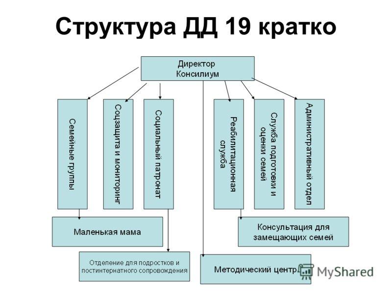 Структура ДД 19 кратко