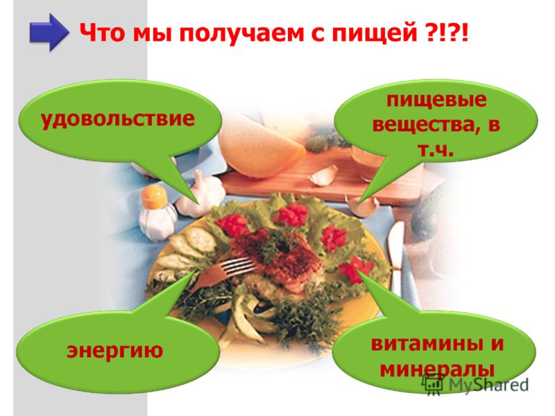 Что мы получаем с пищей ?!?!