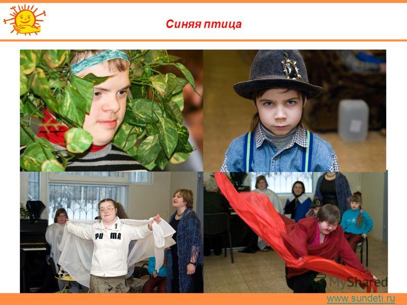 www.sundeti.ru Синяя птица