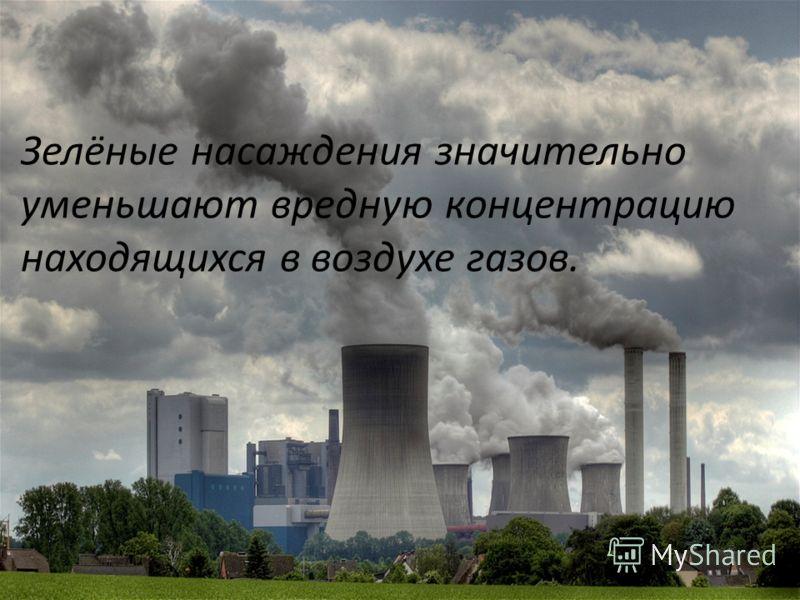 Зелёные насаждения значительно уменьшают вредную концентрацию находящихся в воздухе газов.