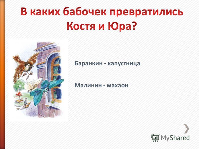 Баранкин - капустница Малинин - махаон