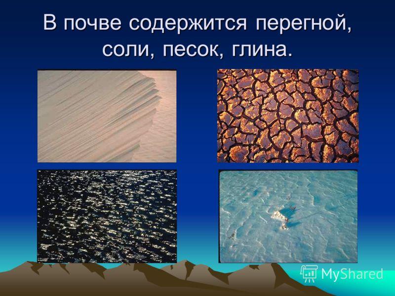 В почве содержится перегной, соли, песок, глина.
