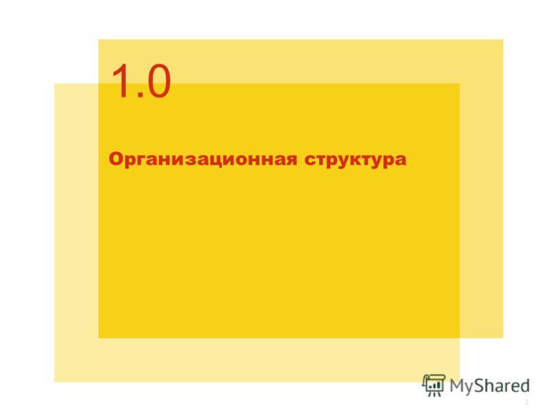 Организационная структура 1.0 2