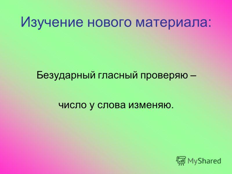 ̷̷ медведь ̷ корова ̷ воробей ̷ Москва