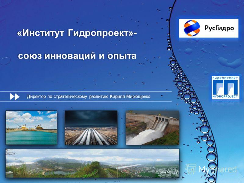 «Институт Гидропроект»- союз инноваций и опыта Директор по стратегическому развитию Кирилл Мирющенко