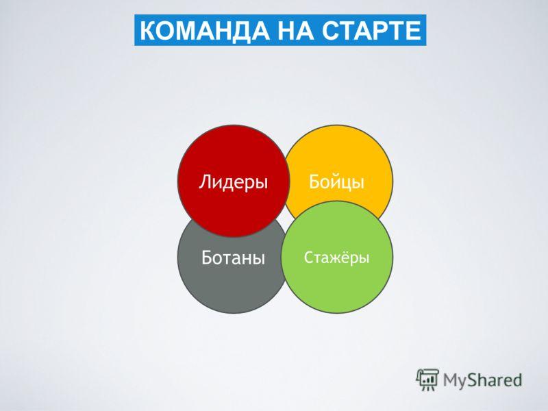 КОМАНДА НА СТАРТЕ Бойцы Ботаны Стажёры Лидеры