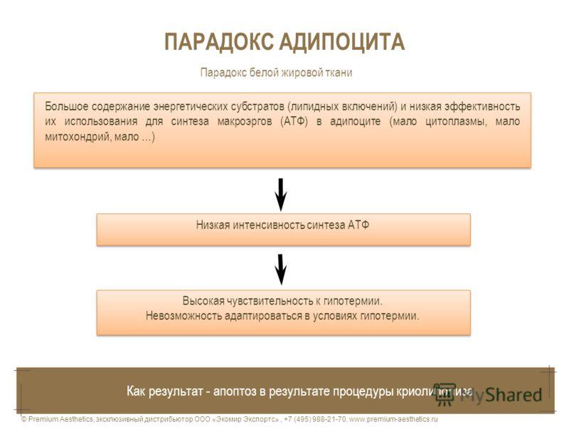 ПАРАДОКС АДИПОЦИТА Большое содержание энергетических субстратов (липидных включений) и низкая эффективность их использования для синтеза макроэргов (АТФ) в адипоците (мало цитоплазмы, мало митохондрий, мало …) Низкая интенсивность синтеза АТФ Высокая