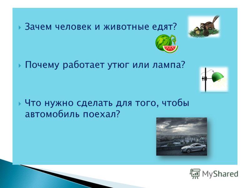 Зачем человек и животные едят? Почему работает утюг или лампа? Что нужно сделать для того, чтобы автомобиль поехал?