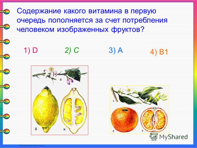 Содержание какого витамина в первую очередь пополняется за счет потребления человеком изображенных фруктов? 1) D2) С3) А 4) В1