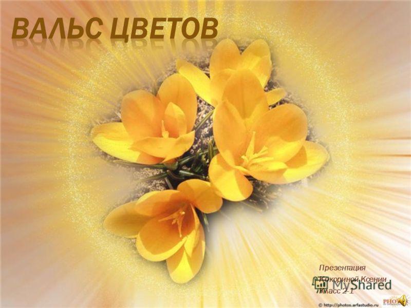 Презентация Кокориной Ксении Класс 2-1