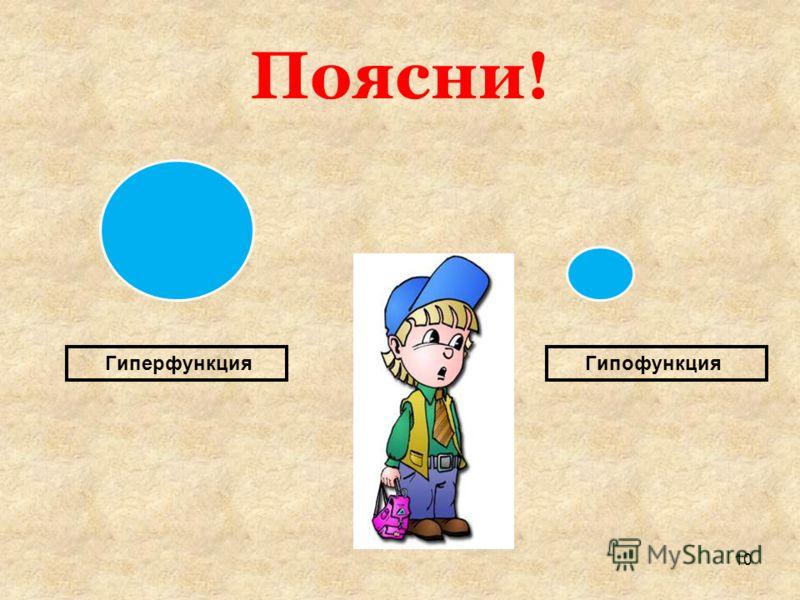 Поясни! ГиперфункцияГипофункция 10