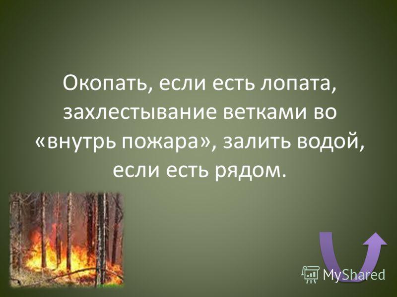 Окопать, если есть лопата, захлестывание ветками во «внутрь пожара», залить водой, если есть рядом.