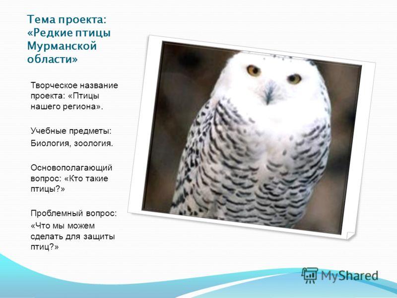 Тема проекта: «Редкие птицы Мурманской области» Творческое название проекта: «Птицы нашего региона». Учебные предметы: Биология, зоология. Основополагающий вопрос: «Кто такие птицы?» Проблемный вопрос: «Что мы можем сделать для защиты птиц?»