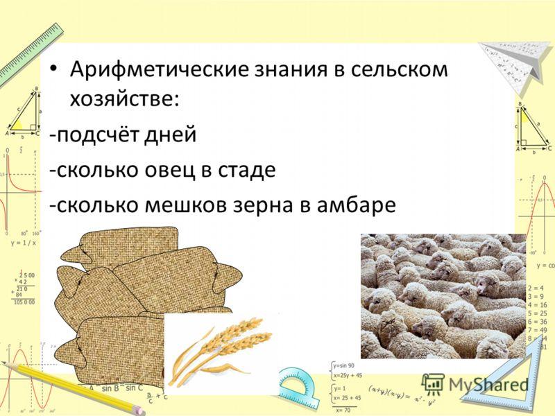 Арифметические знания в сельском хозяйстве: -подсчёт дней -сколько овец в стаде -сколько мешков зерна в амбаре