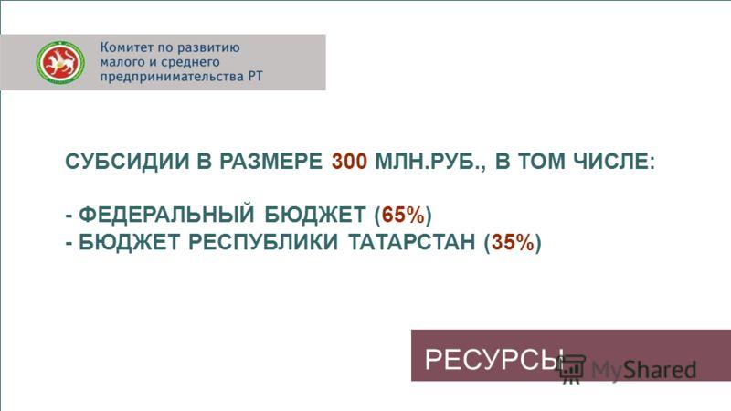 РЕСУРСЫ СУБСИДИИ В РАЗМЕРЕ 300 МЛН.РУБ., В ТОМ ЧИСЛЕ: - ФЕДЕРАЛЬНЫЙ БЮДЖЕТ (65%) - БЮДЖЕТ РЕСПУБЛИКИ ТАТАРСТАН (35%)