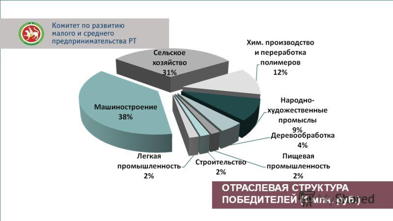 ОТРАСЛЕВАЯ СТРУКТУРА ПОБЕДИТЕЛЕЙ (1 млн. руб.)