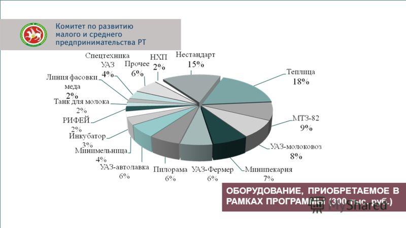ОБОРУДОВАНИЕ, ПРИОБРЕТАЕМОЕ В РАМКАХ ПРОГРАММЫ (300 тыс. руб.)