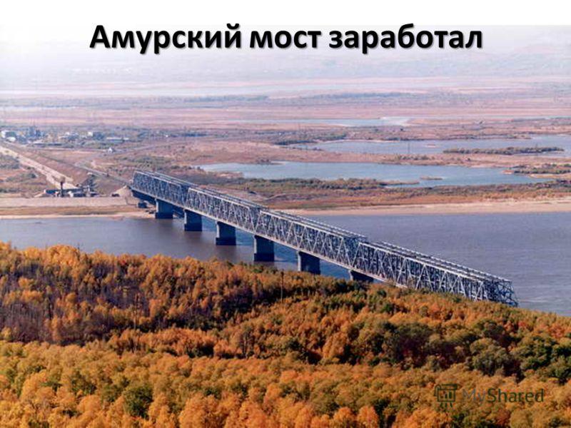 Амурский мост заработал