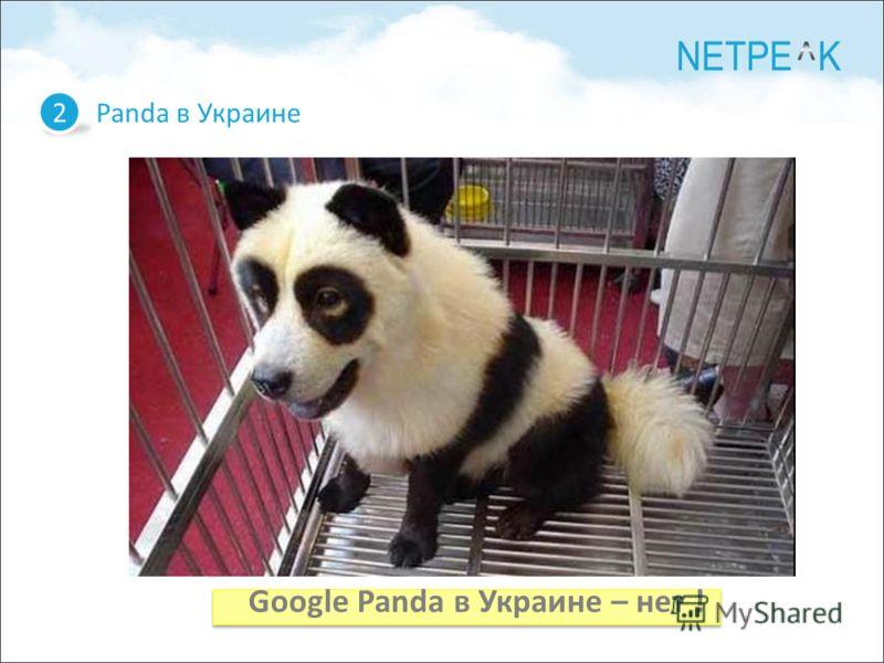 Panda в Украине 2 Google Panda в Украине – нет !