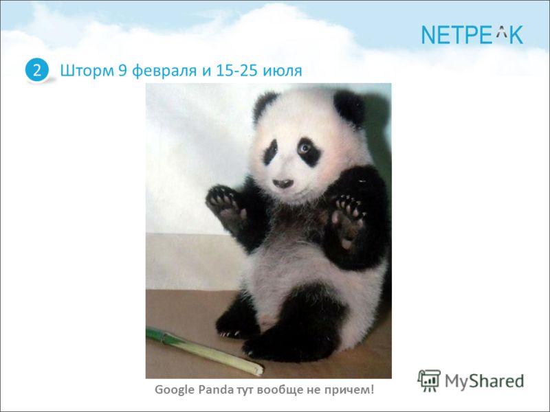 Шторм 9 февраля и 15-25 июля 2 Google Panda тут вообще не причем!
