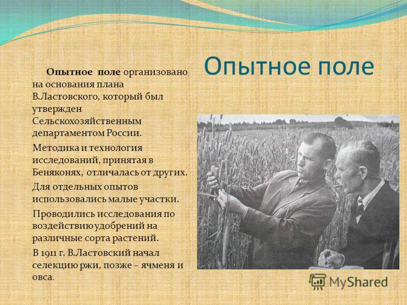Опытное поле Опытное поле организовано на основания плана В.Ластовского, который был утвержден Сельскохозяйственным департаментом России. Методика и технология исследований, принятая в Беняконях, отличалась от других. Для отдельных опытов использовал