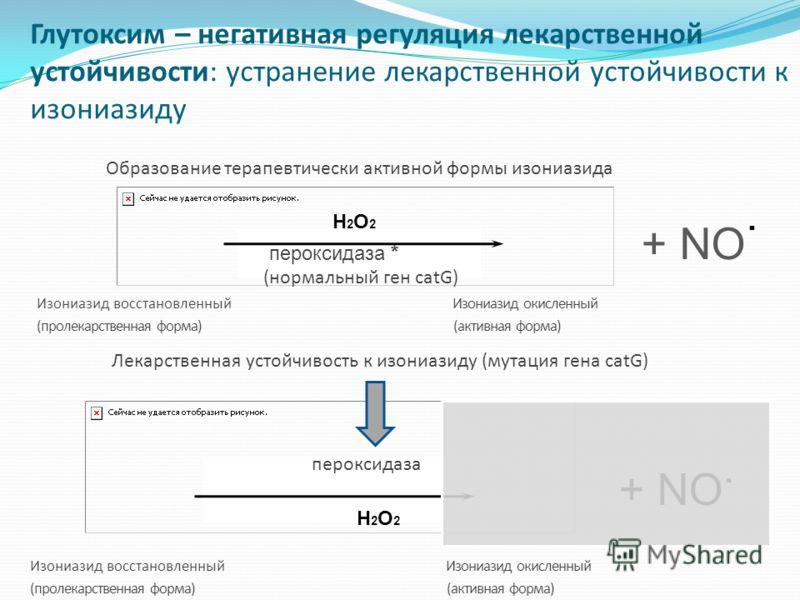Образование терапевтически активной формы изониазида YY + NO H2O2H2O2 пероксидаза. Изониазид восстановленный Изониазид окисленный (пролекарственная форма) (активная форма) Лекарственная устойчивость к изониазиду (мутация гена catG) *. + NO YY H2O2H2O