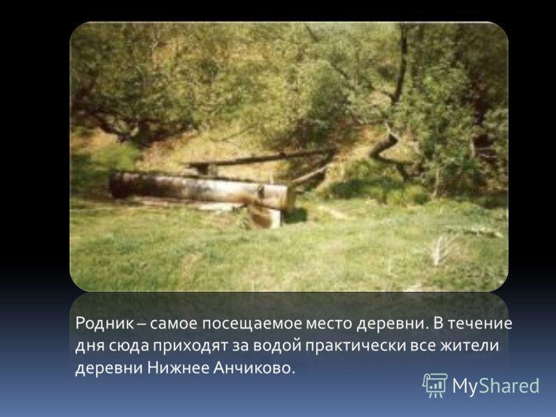 Родник – самое посещаемое место деревни. В течение дня сюда приходят за водой практически все жители деревни Нижнее Анчиково.