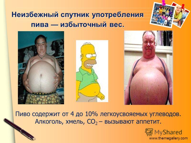 www.themegallery.com Неизбежный спутник употребления пива избыточный вес. Пиво содержит от 4 до 10% легкоусвояемых углеводов. Алкоголь, хмель, СО 2 – вызывают аппетит.