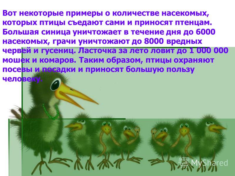Вот некоторые примеры о количестве насекомых, которых птицы съедают сами и приносят птенцам. Большая синица уничтожает в течение дня до 6000 насекомых, грачи уничтожают до 8000 вредных червей и гусениц. Ласточка за лето ловит до 1 000 000 мошек и ко