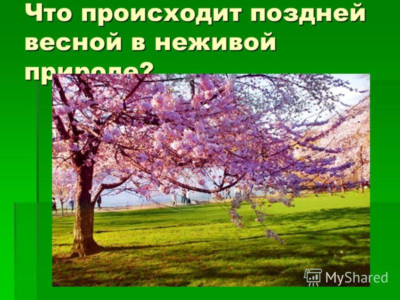 Презентация по окружающему миру весна в природе дмитриева 3 класс
