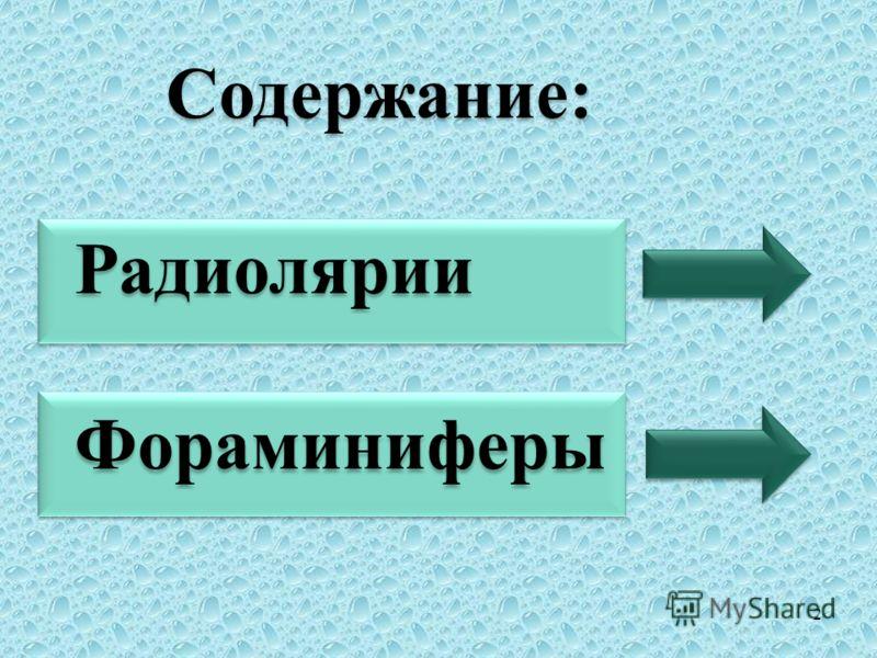 Содержание: Радиолярии Фораминиферы Содержание: Радиолярии Фораминиферы 2