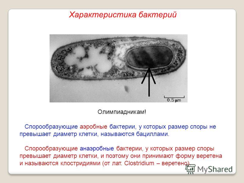 Олимпиадникам! Спорообразующие аэробные бактерии, у которых размер споры не превышает диаметр клетки, называются бациллами. Спорообразующие анаэробные бактерии, у которых размер споры превышает диаметр клетки, и поэтому они принимают форму веретена и